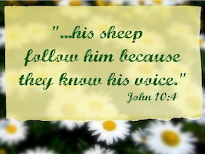 Do You Hear His Voice?